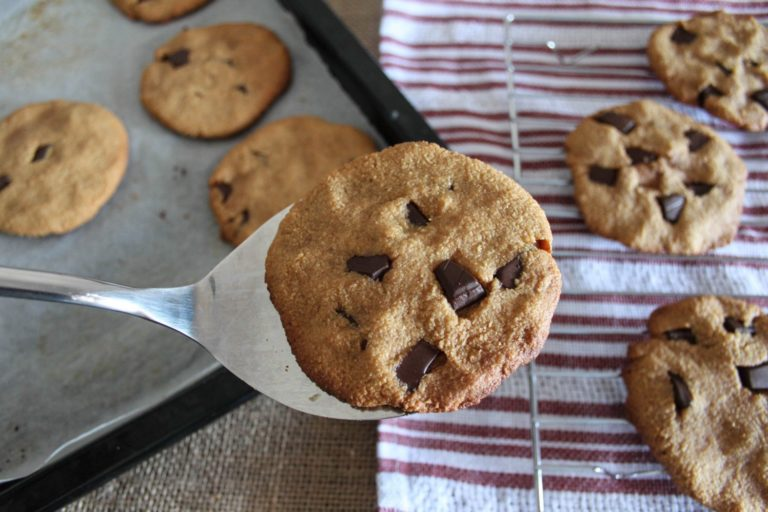 Dark Chocolate Chip Coconut Cookies (plus bonus tips to get your health back fast!)